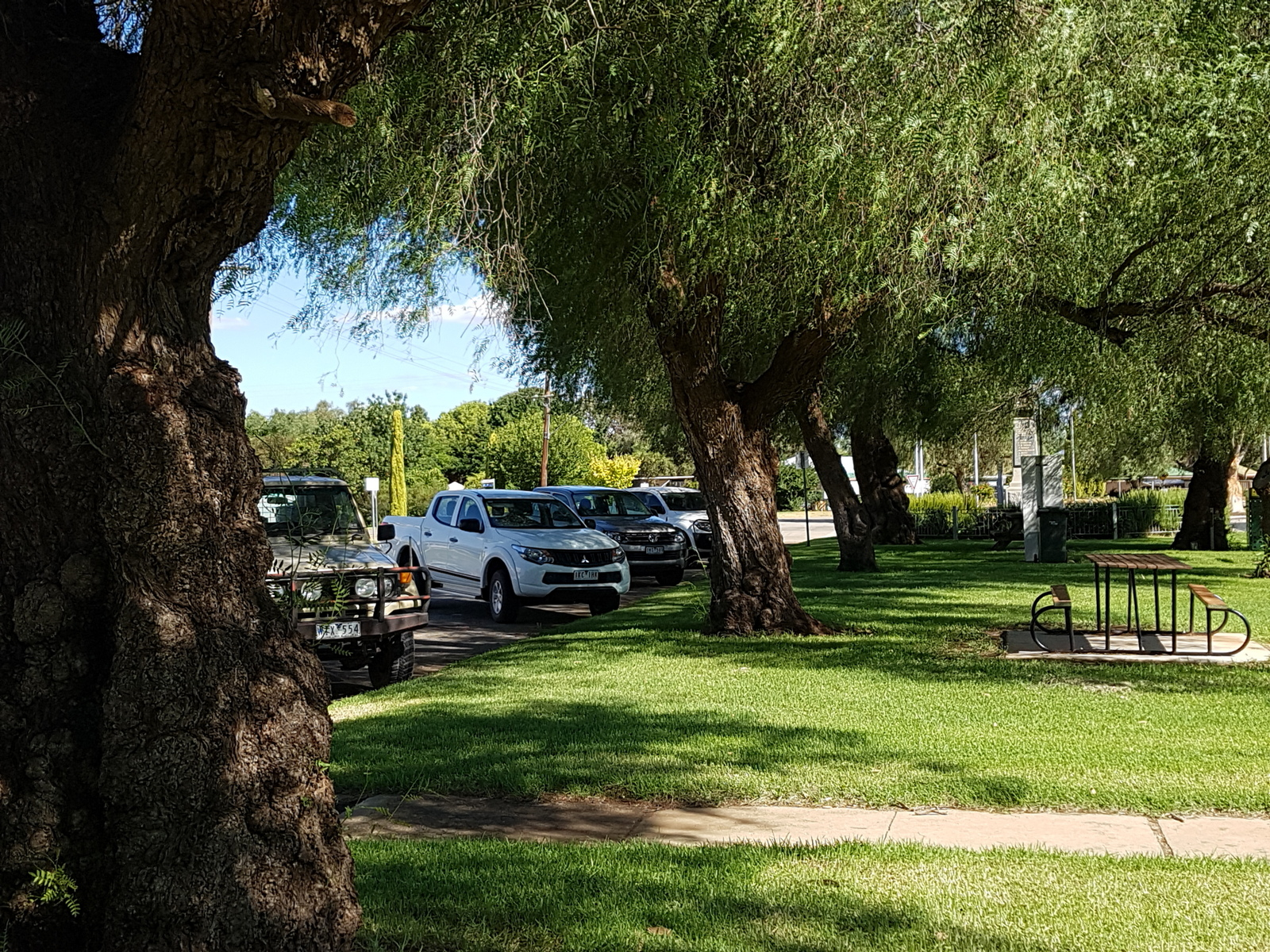 1-20190208_Quambatook Peppercorn Trees.jpg