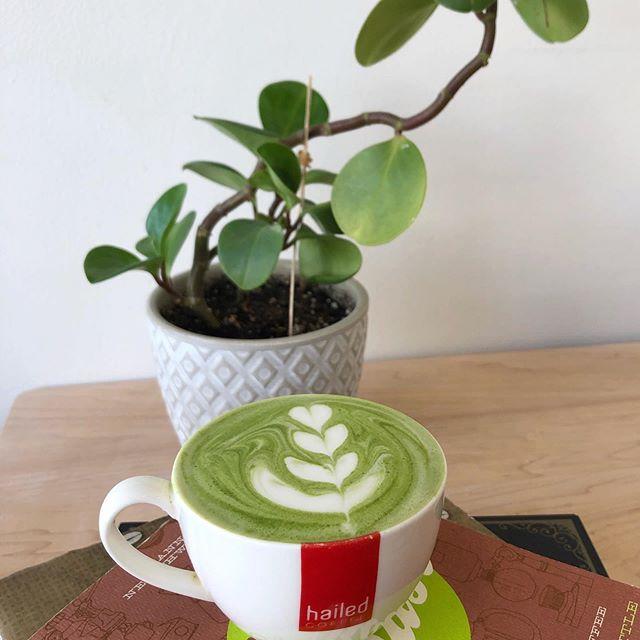 Happy Sunday 🥰 - - - - #hailedcoffee #hailed #coffee #coffeeshop #toronto #canada #torontocoffee #latte #latteart #hailedlatte #cardamom #rosetta #leaf #tulip #flower #drinkme #torontocafe  #collegepark #riverdale #espresso #espressoallday #ceramic #coffeeselfie #crema #torontoespresso #coffeeviews #matcha #matchalatte #matchafix