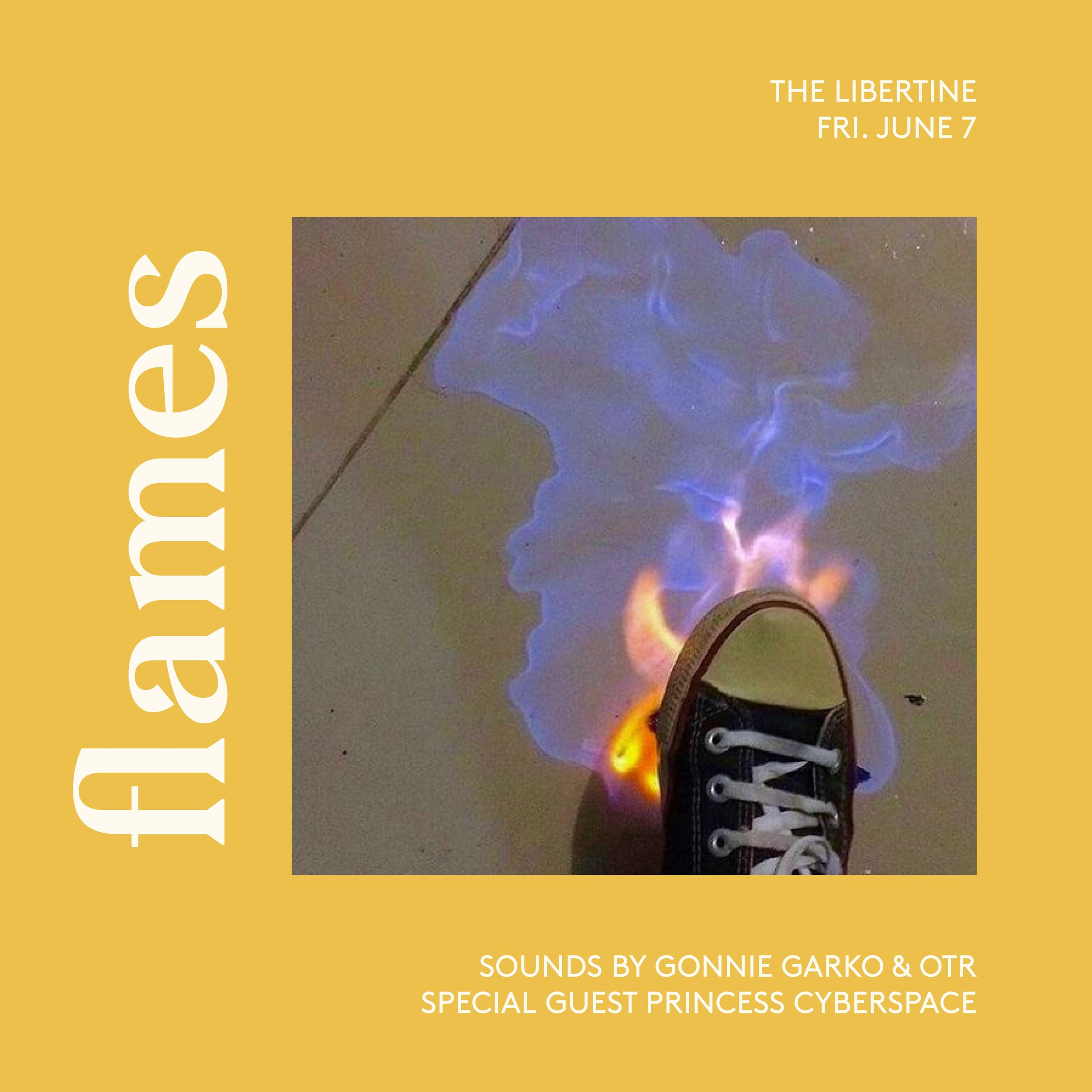 DJ PRINCESS CYBERSPACE LIVE AT THE LIBERTINE TORONTO.JPG