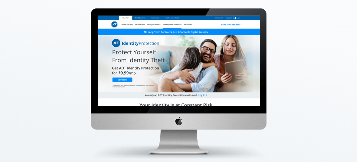 Identity Protection page design by Lisa Lopuck