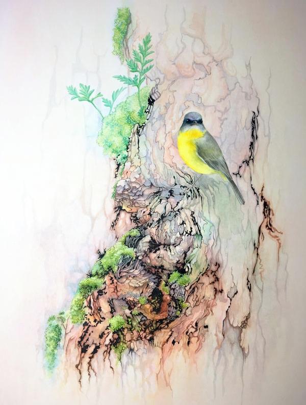 Laura Grogan - Eastern Yellow Robbin