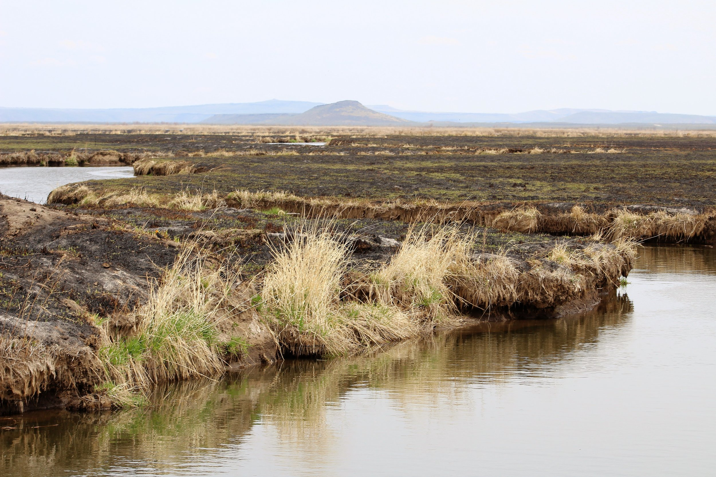 Malheur Wildlife Refuge - Understanding stakeholder perspectives and values for Malheur National Wildlife Refuge management.Methods: Interviews, Workshops, Summits