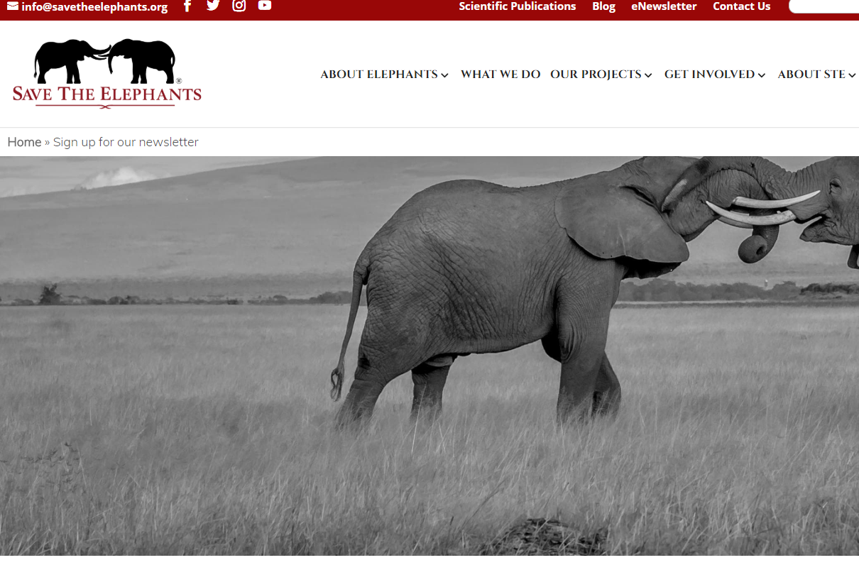 Save the Elephants