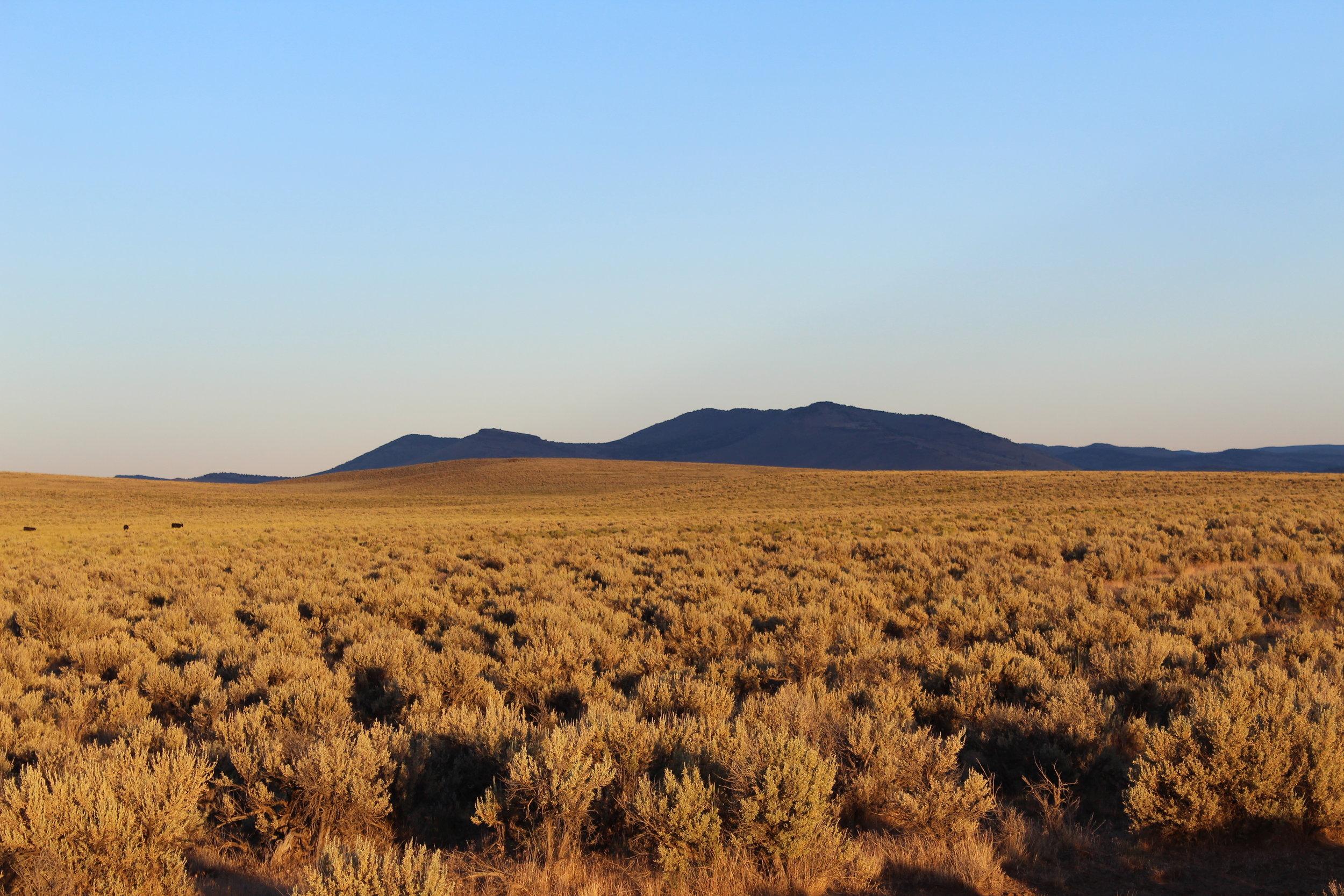 Ranch Land Near Refuge