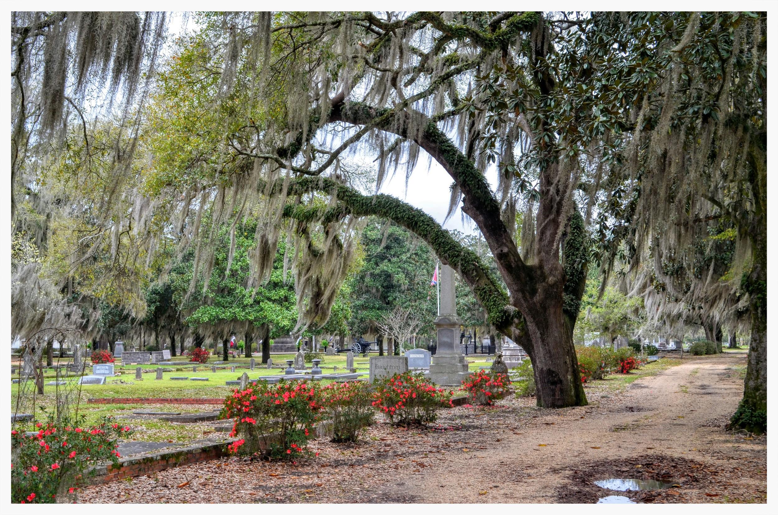Live Oak Cemetery, Selma, AlabamaT