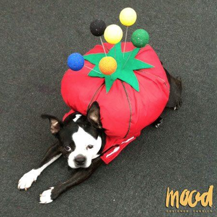 Swatch all dressed up for Halloween