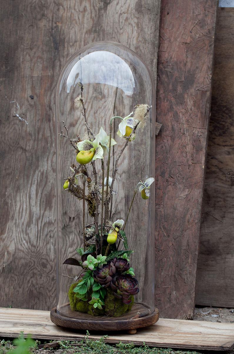 eddie-zaratsian-succulent-orchid-bell-jar-floral-arrangement-marianne-lozano-photography.jpg