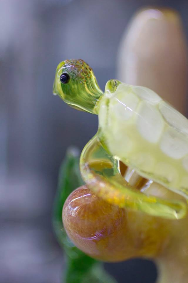 Turtle Bong Close Up