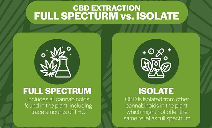 Full Spectrum vs Isolation CBD
