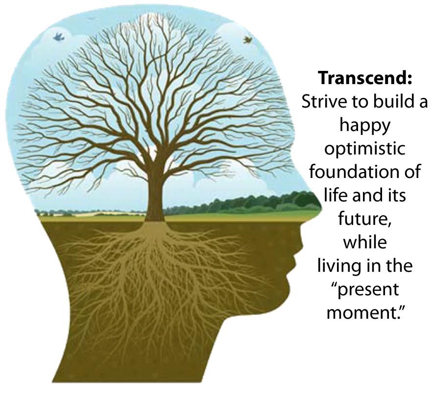 Transersonal.jpg