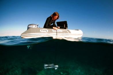 water survey.jpg