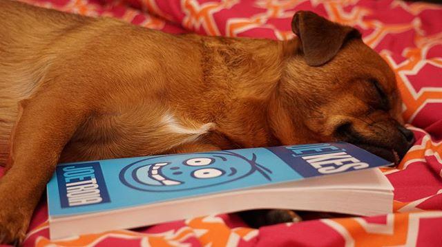 #tater Falling asleep next to his favorite book #joekes