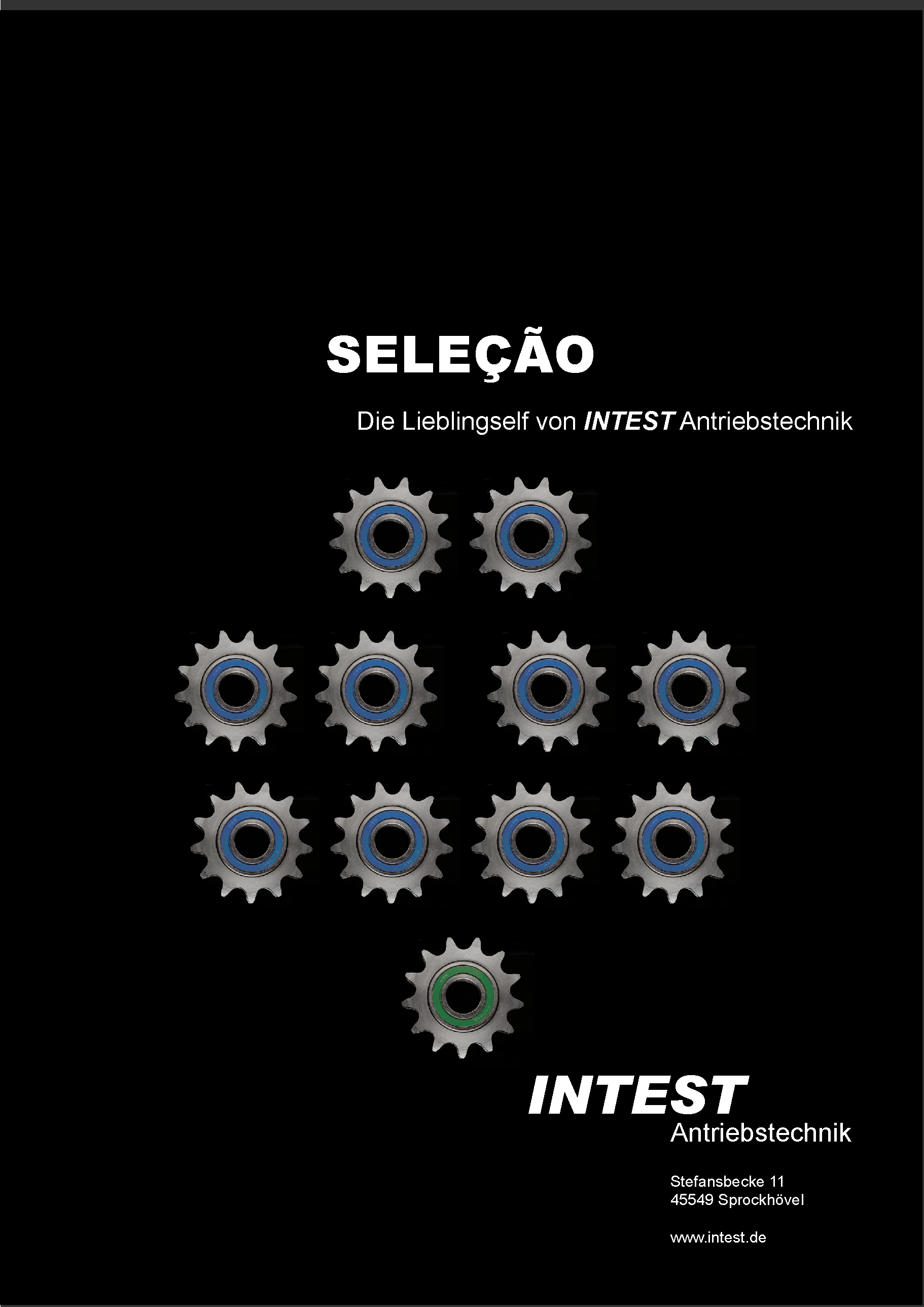 Anzeige_Selecao.png