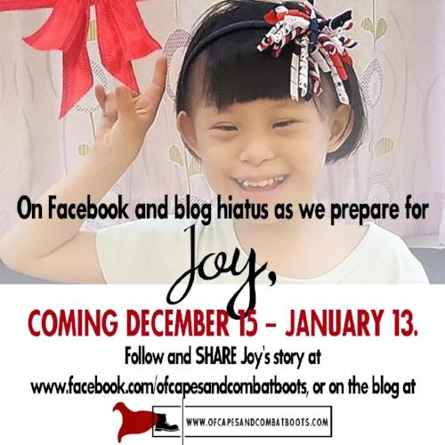 Blog Hiatus for Joy