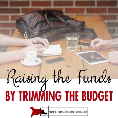 Raising the Funds by Trimming the Budget