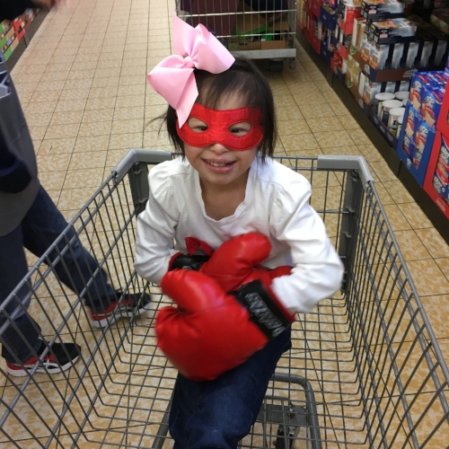 Grocery Cart Boxer