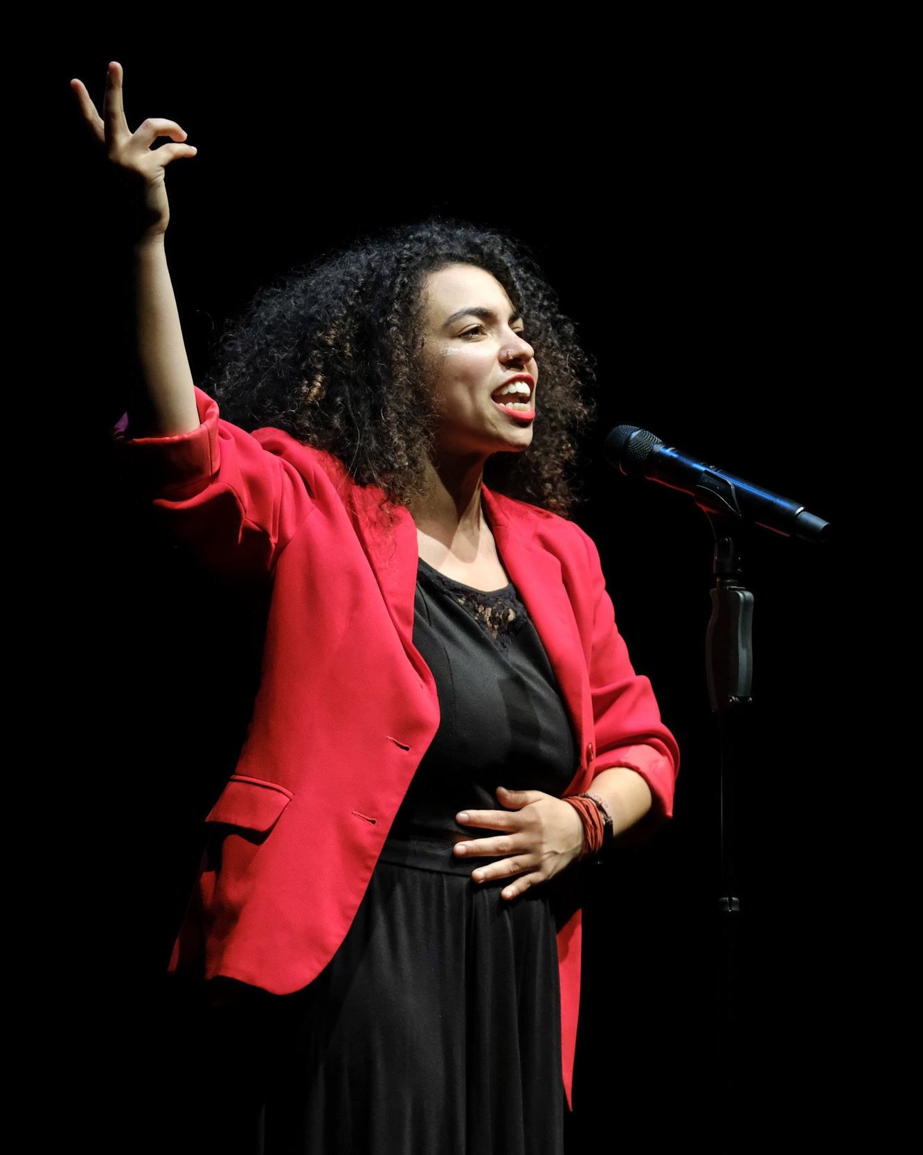 Arielle Cottingham , 2016 Australian Poetry Slam Champion, performing at the 2017 APS National Final at Sydney Opera House.