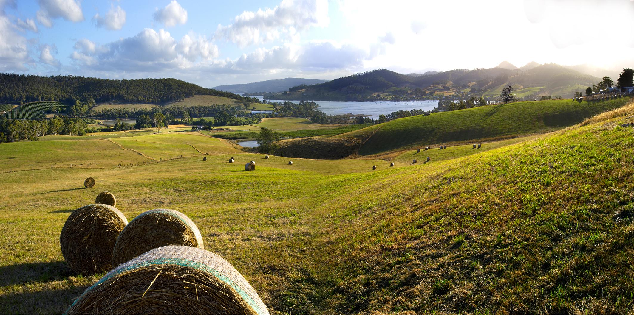 Frenchaman's RIver farm, Cygnet Bay view.jpg