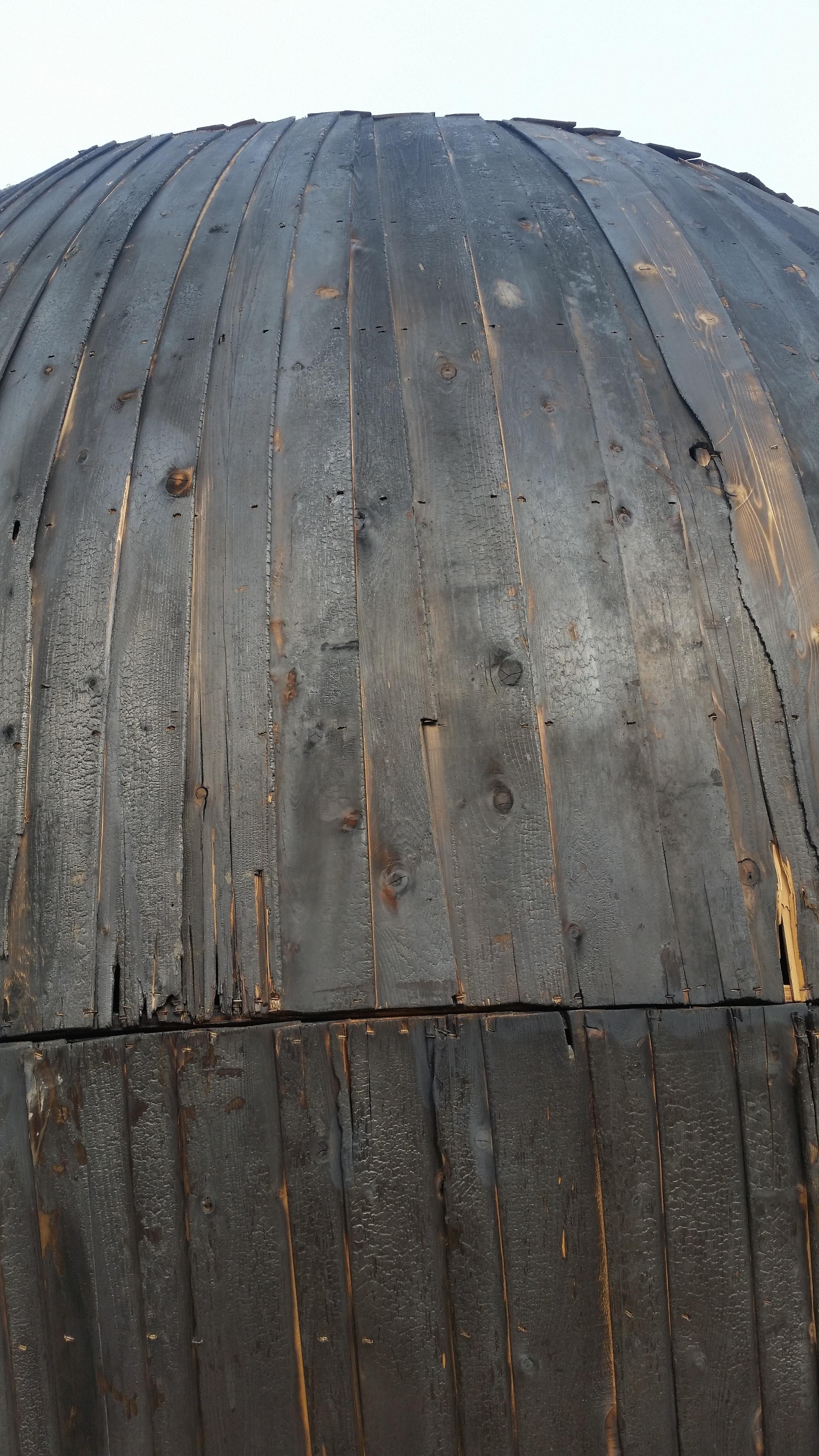 In the Belly of a Bear   Caitlind r.c Brown, Wayne Garrett and Lane Shordee. Calgary, Canada