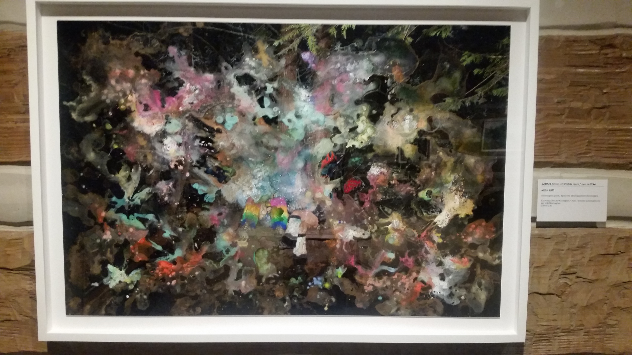 Mess by Sarah Anne Johnson. Chromogenic print.