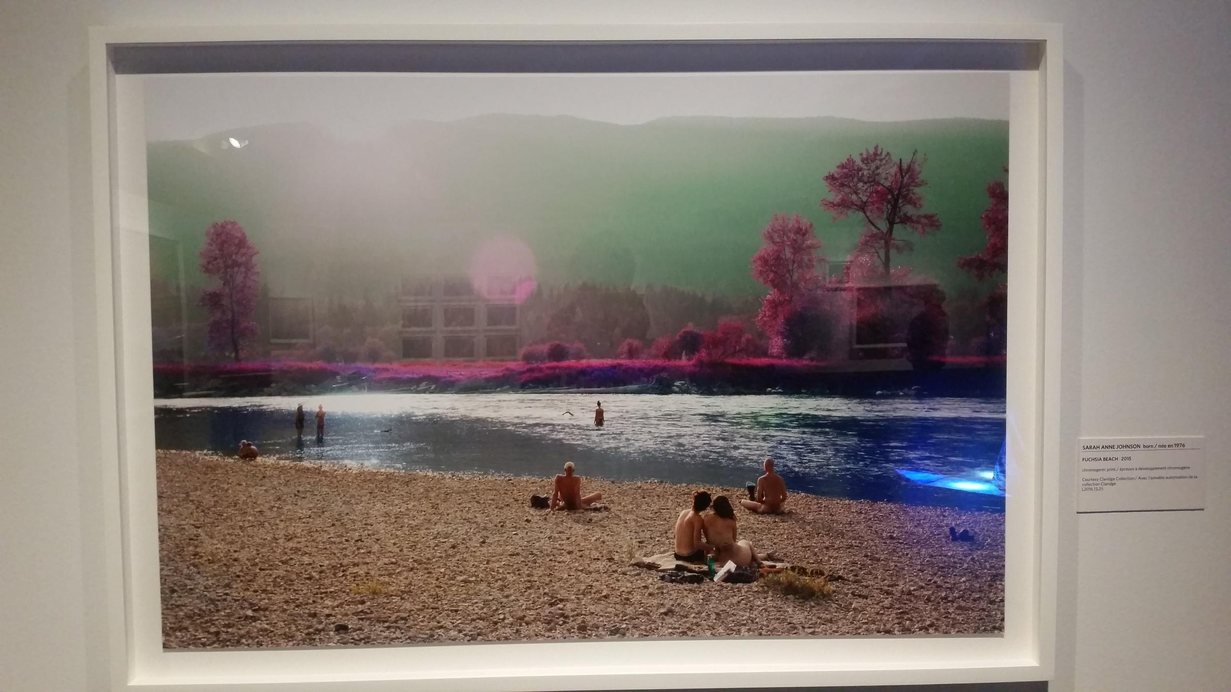 Fuchsia Beach by Sarah Anne Johnson. Chromogenic print.