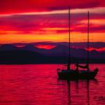 Adrienne Zoe.Island Sunset.jpg