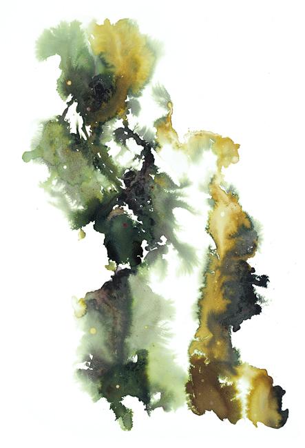 "Stefan Herda,  Nebula #6 . Homemade Inks and Dyes, Tap Water, Rainwater, Vinegar, Bleach, Salt on Arches Paper. 30"" x 22"". 2011."