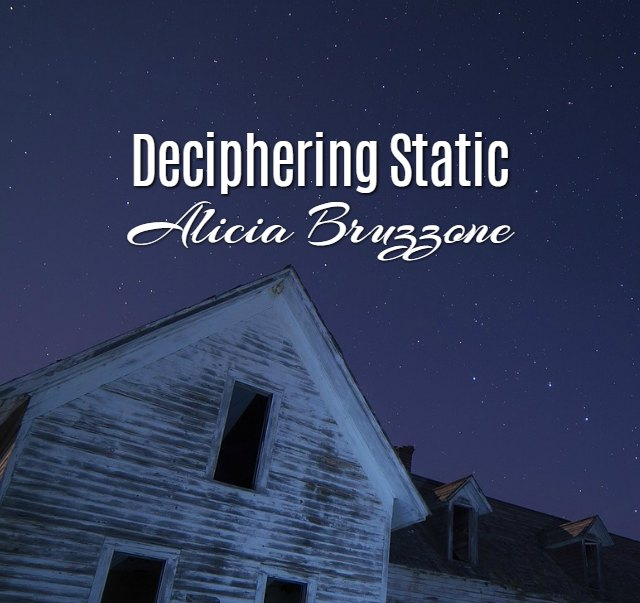 'Deciphering Static' by Alicia Bruzzone