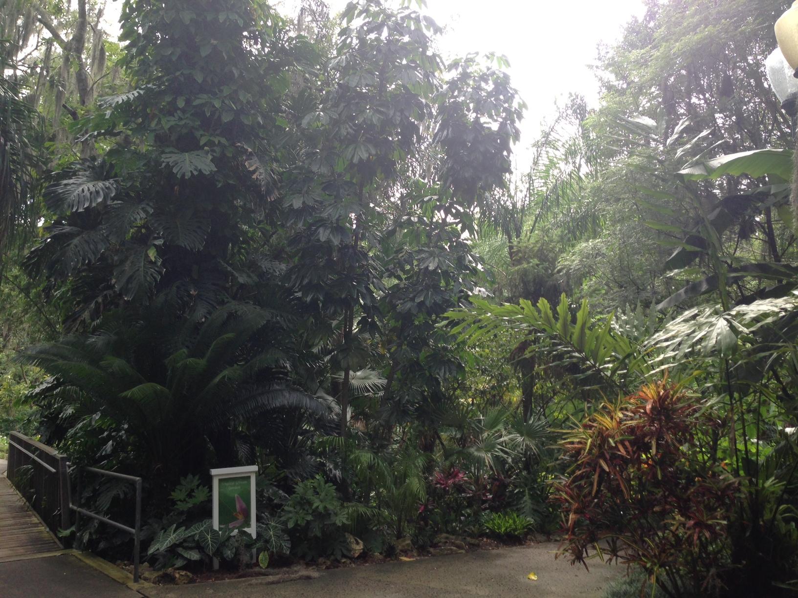 Tropical-Stream-Garden.jpg