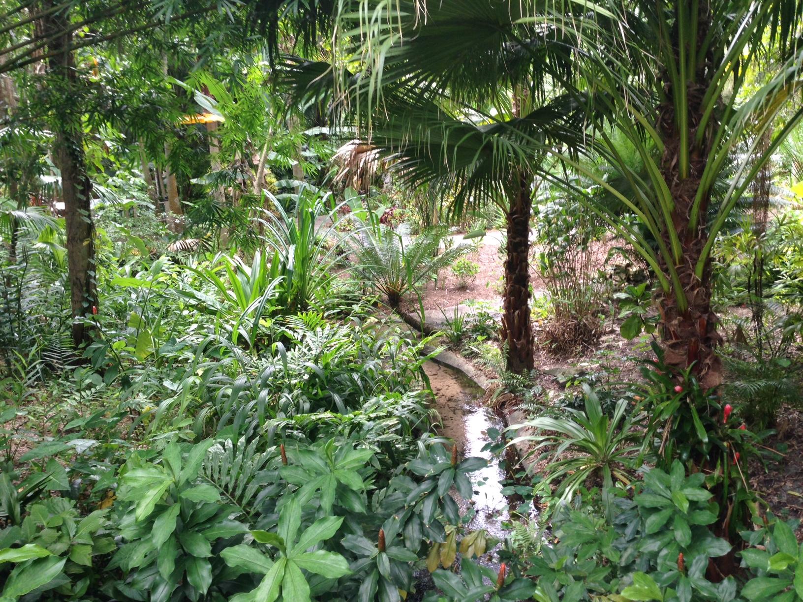 Tropical-Stream-Garden-2.jpg