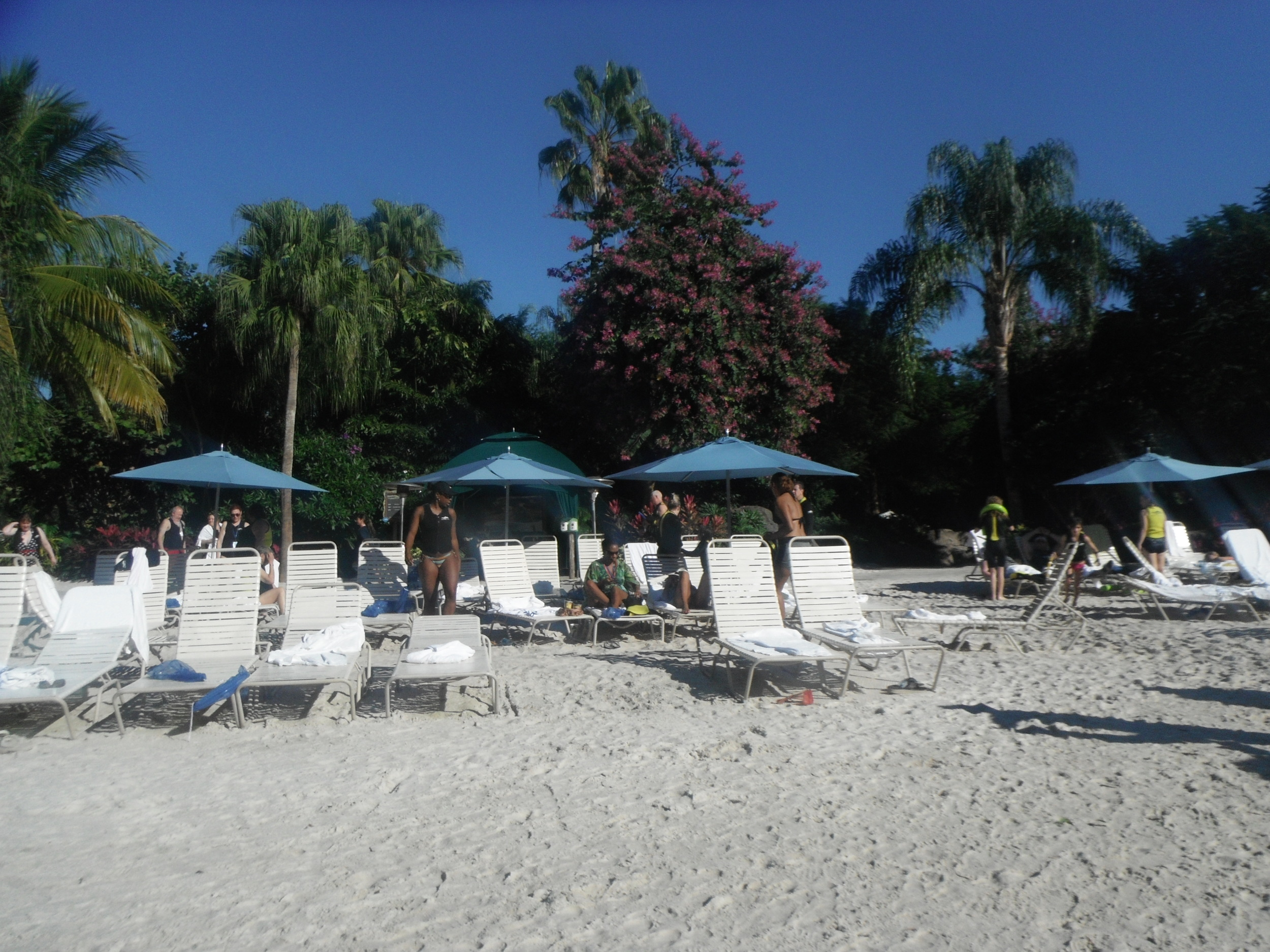Beach at Discovery Cove