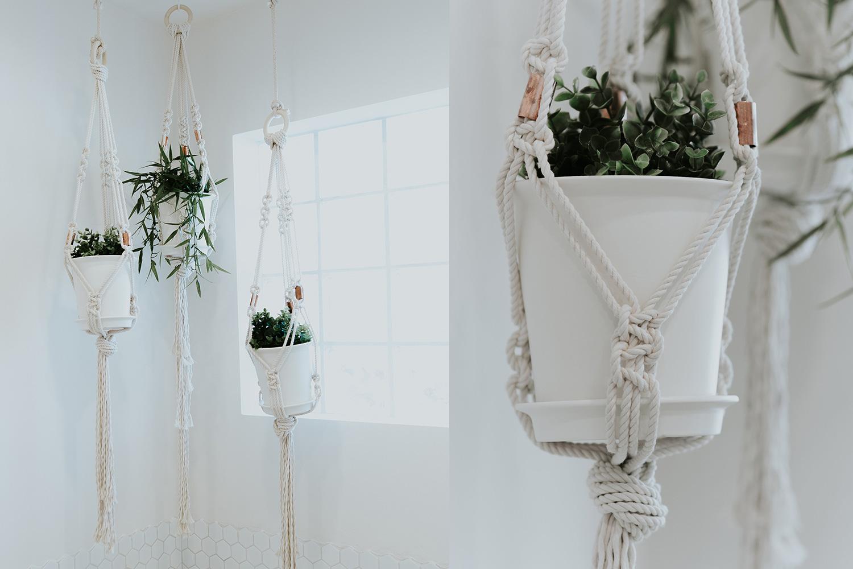 planthangers2.jpg