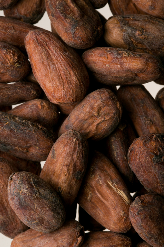 texture_feves-cacao_05.jpg