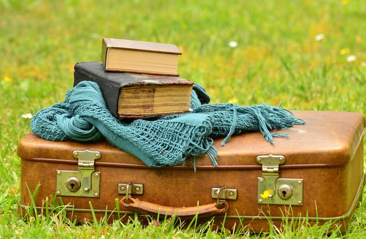 luggage-1482697_1280 old books travel.jpg