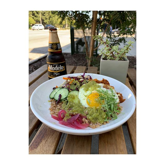 Staffs pick; Farro Grain Bowl with  soyrizo with a Modelo Negra. Available till 5pm today and throughout the week!
