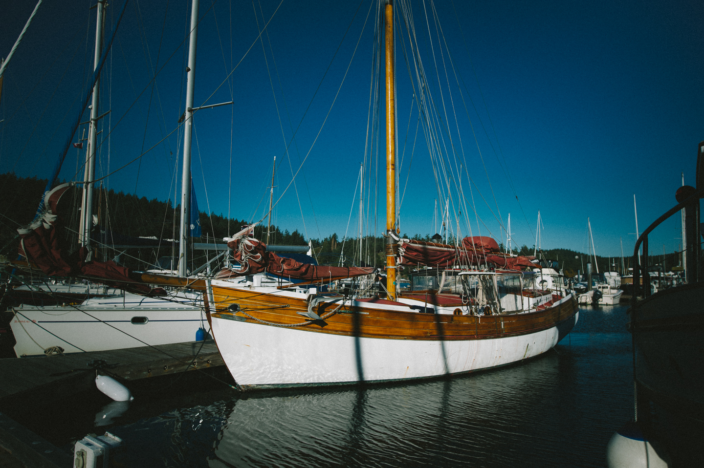 AbesSailboat (30 of 42).jpg
