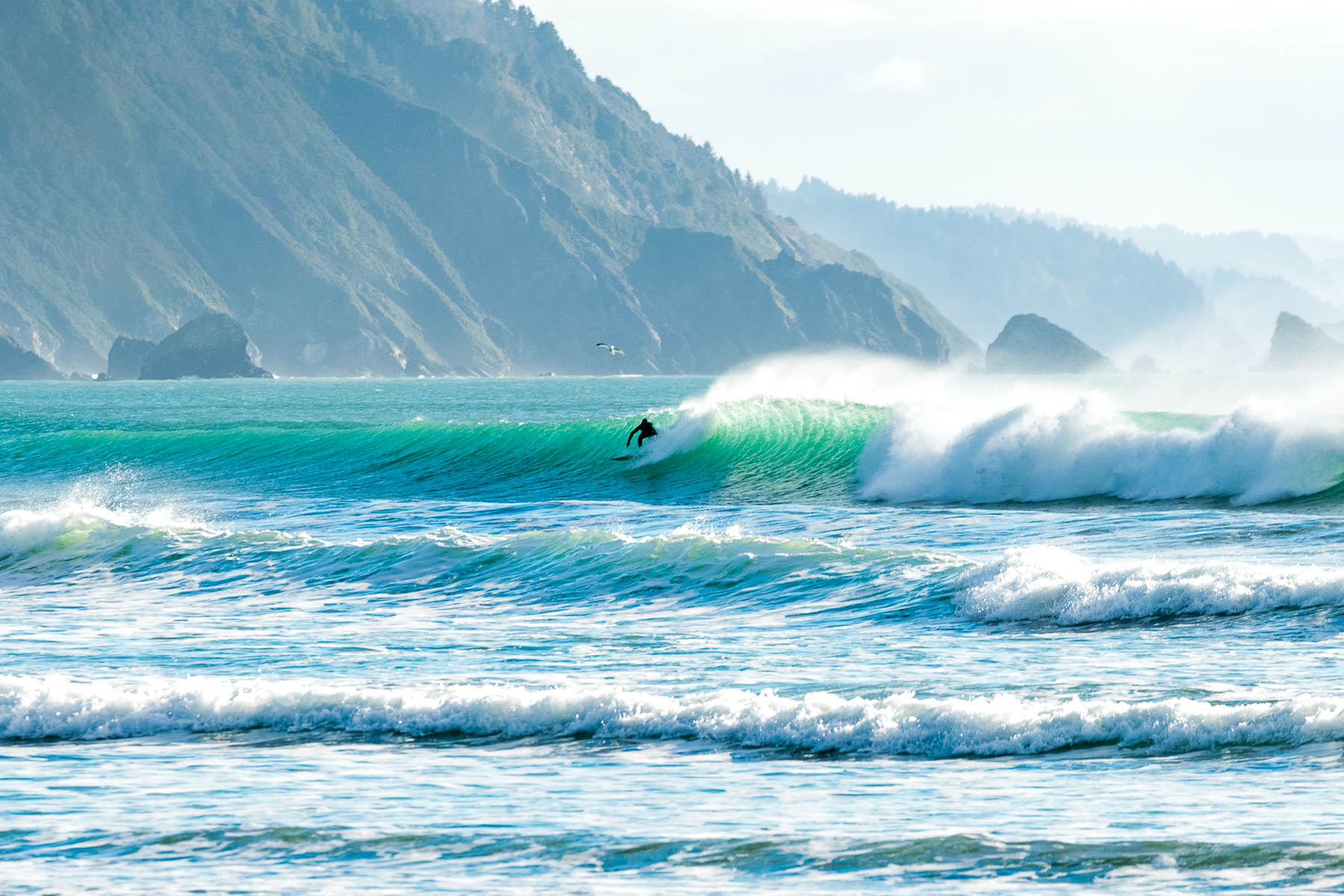 tofino_surf_photography_pacific_coast_highway_Canada_Vancouver_Isand_2018.jpg