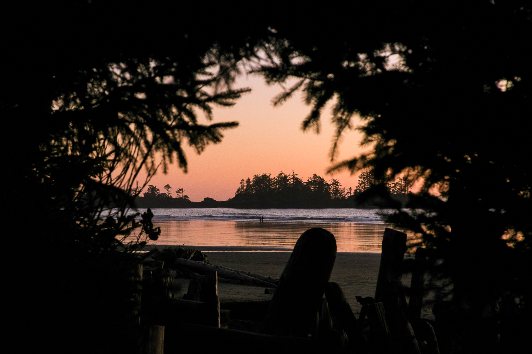 tofino_surf_photography-chesterman_sunset.jpg
