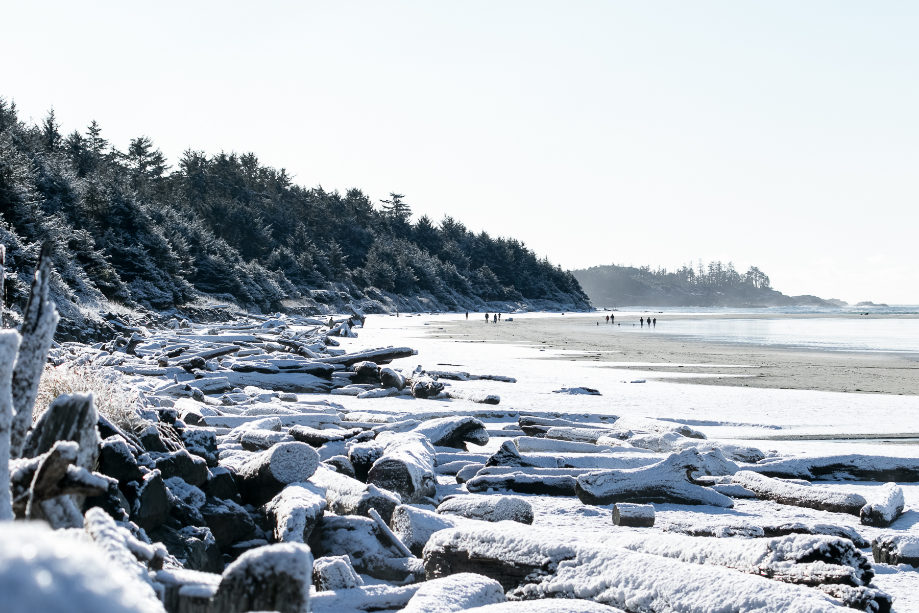 tofino_surf_photography-north_chesterman_snow_2019.jpg