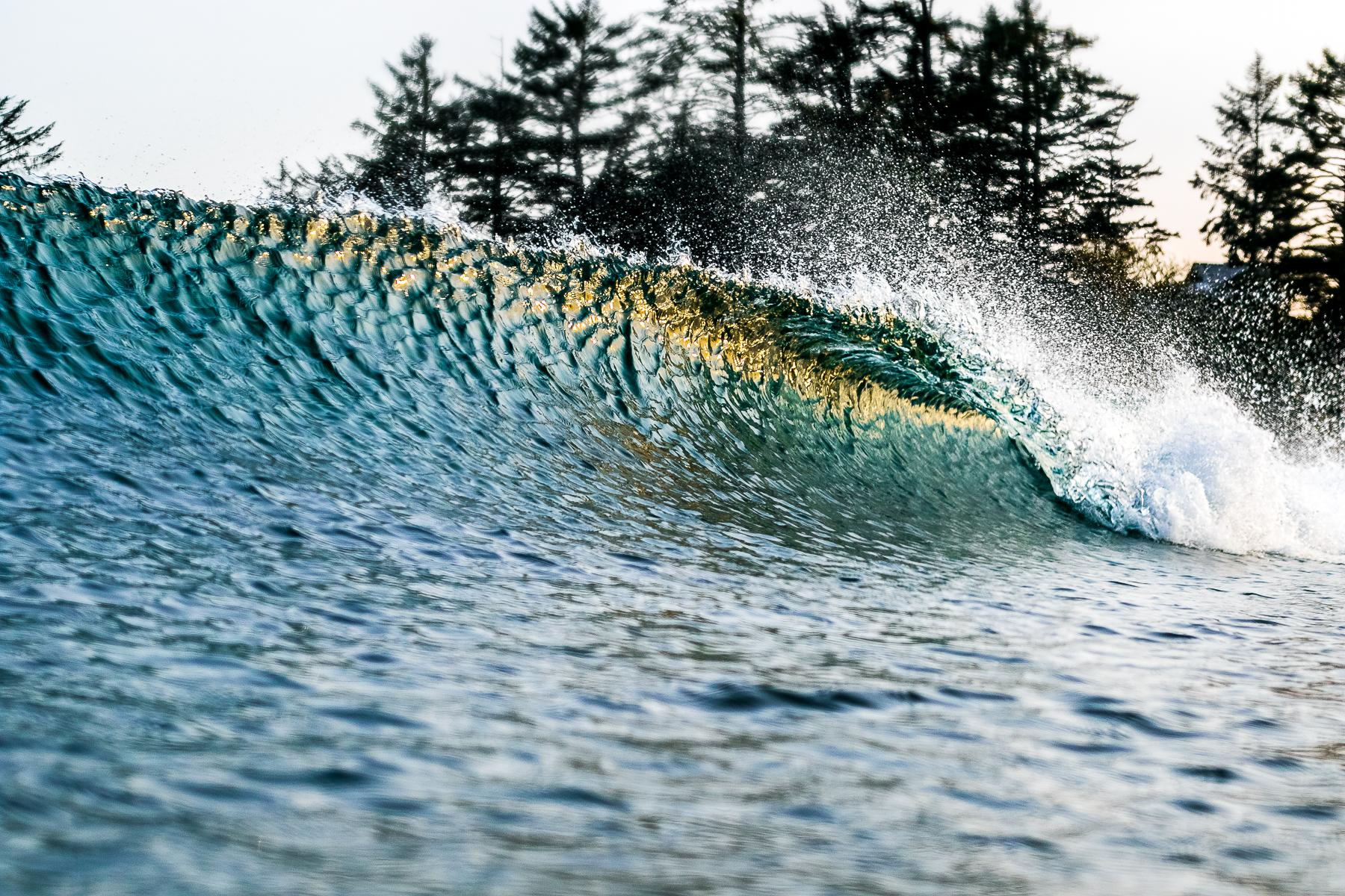 tofino_surf_photography-evening_gold_2.jpg