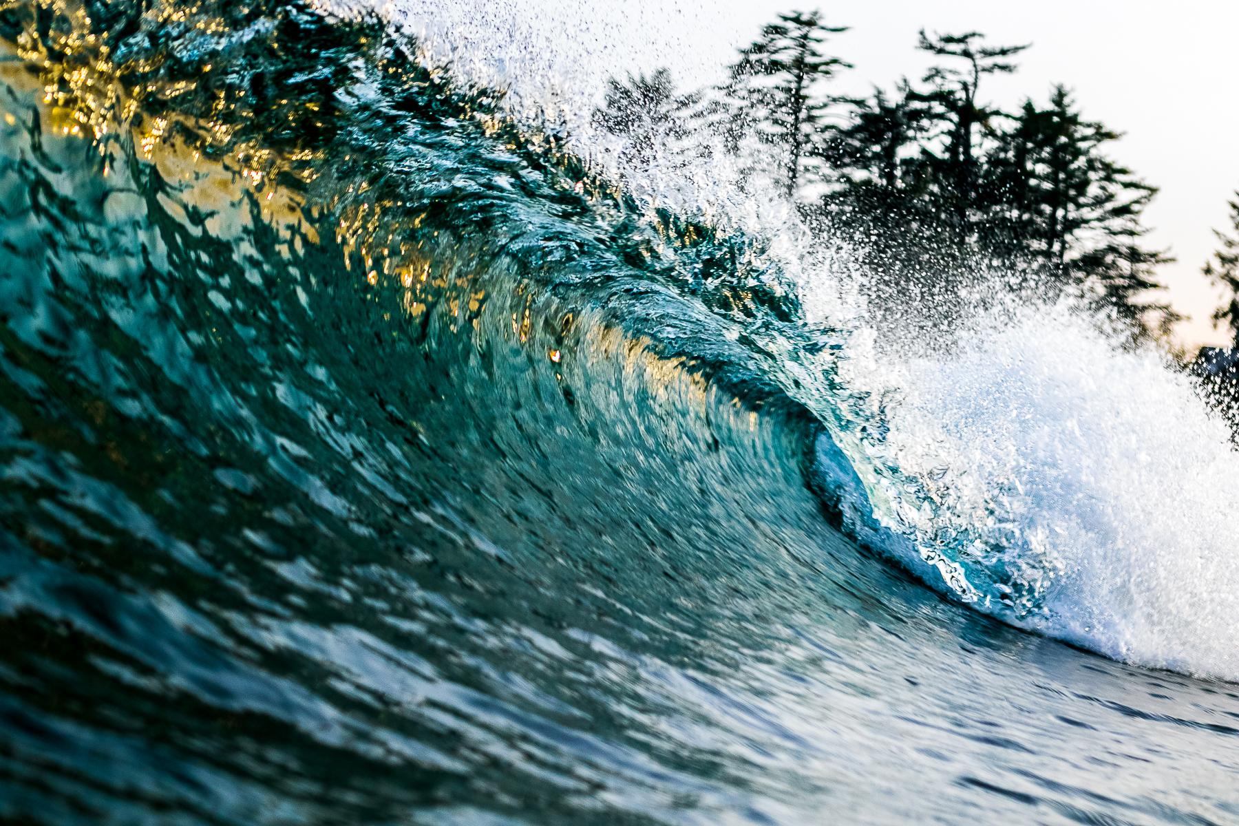 tofino_surf_photography-evening_gold.jpg