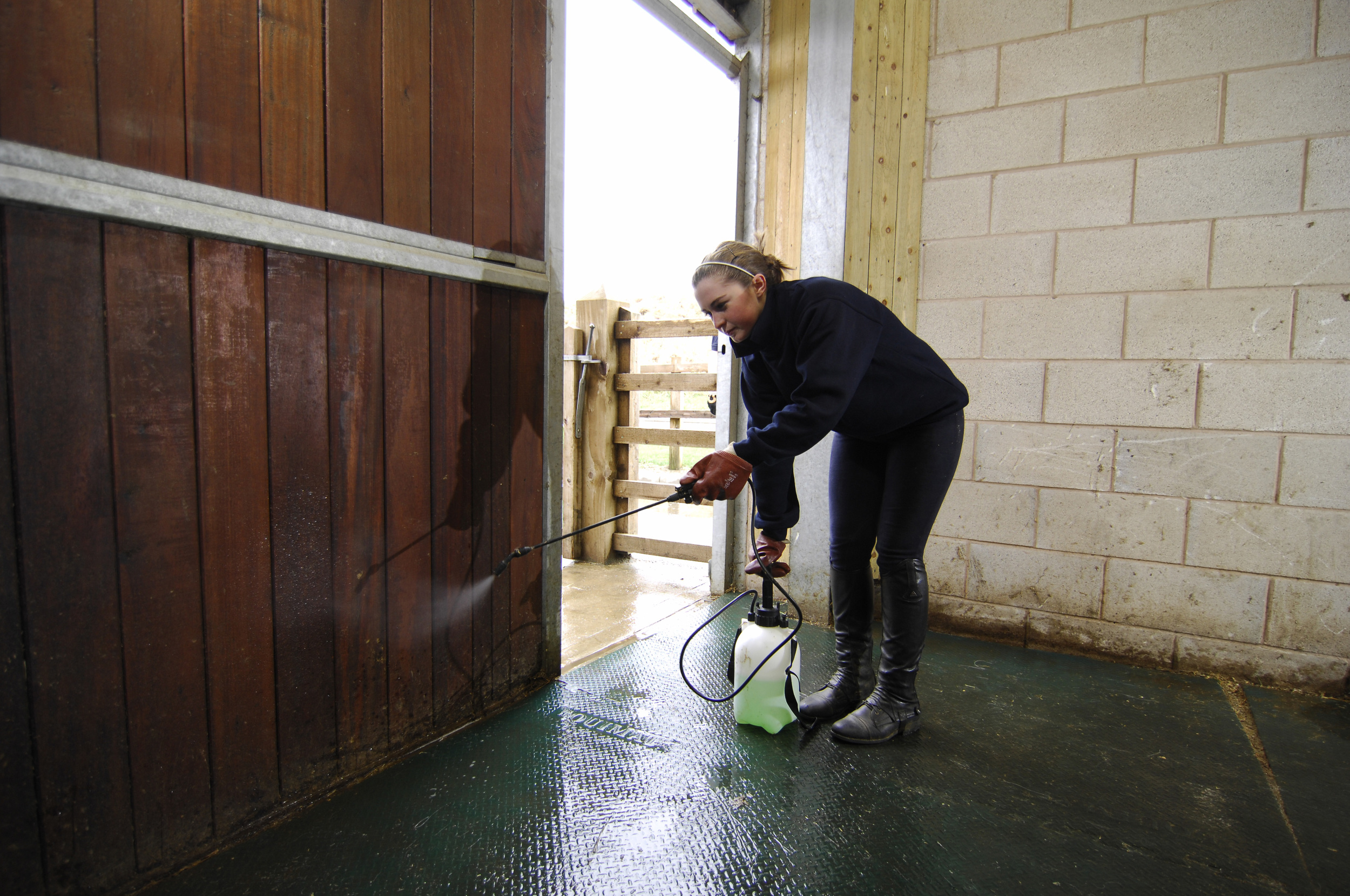 Disinfecting a new stable before your horse moves in is a wise precaution to help prevent ringworm.