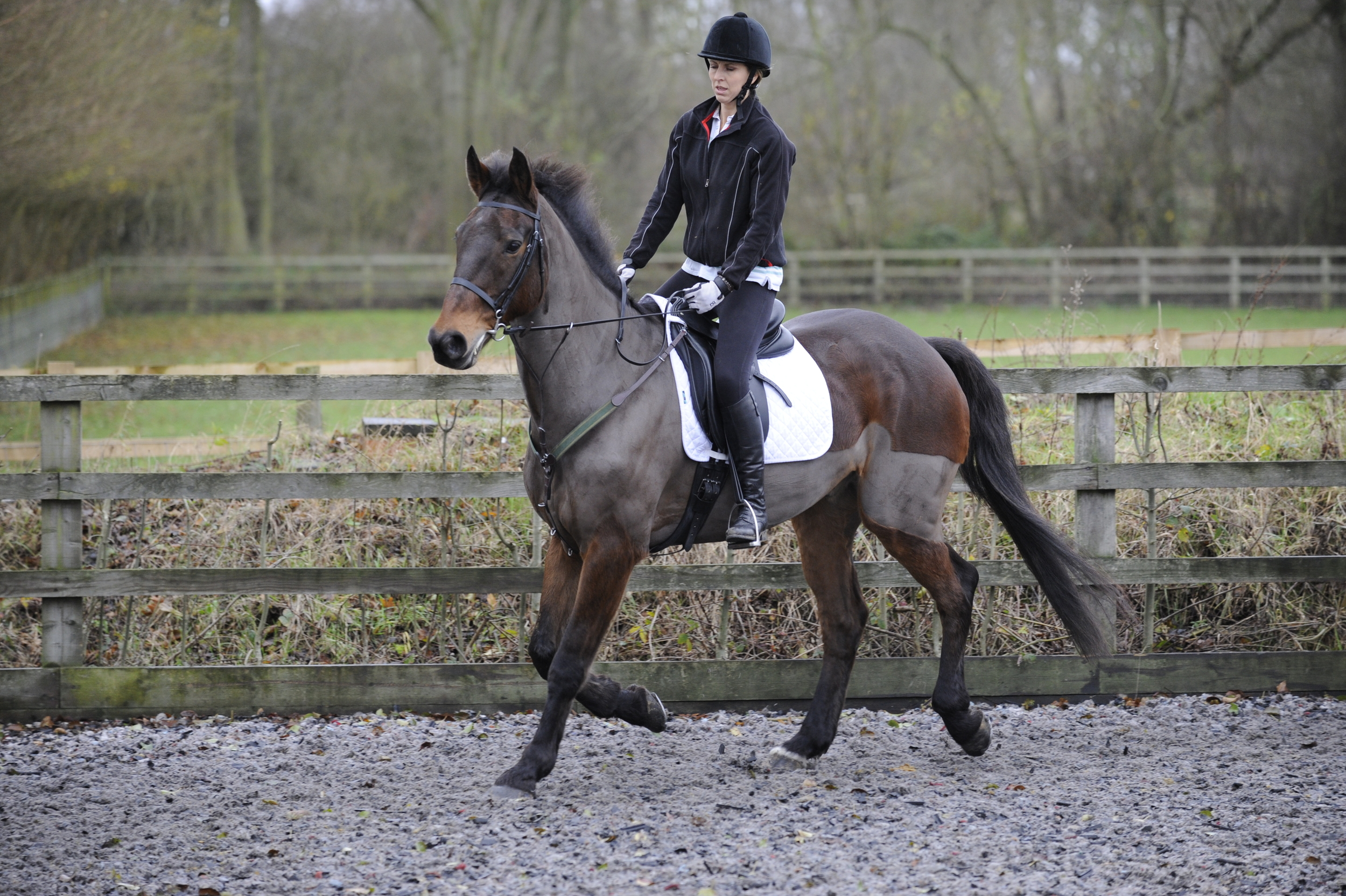 If you feel your horse starting to tense up and sense a moment of panic rising, ride a circle