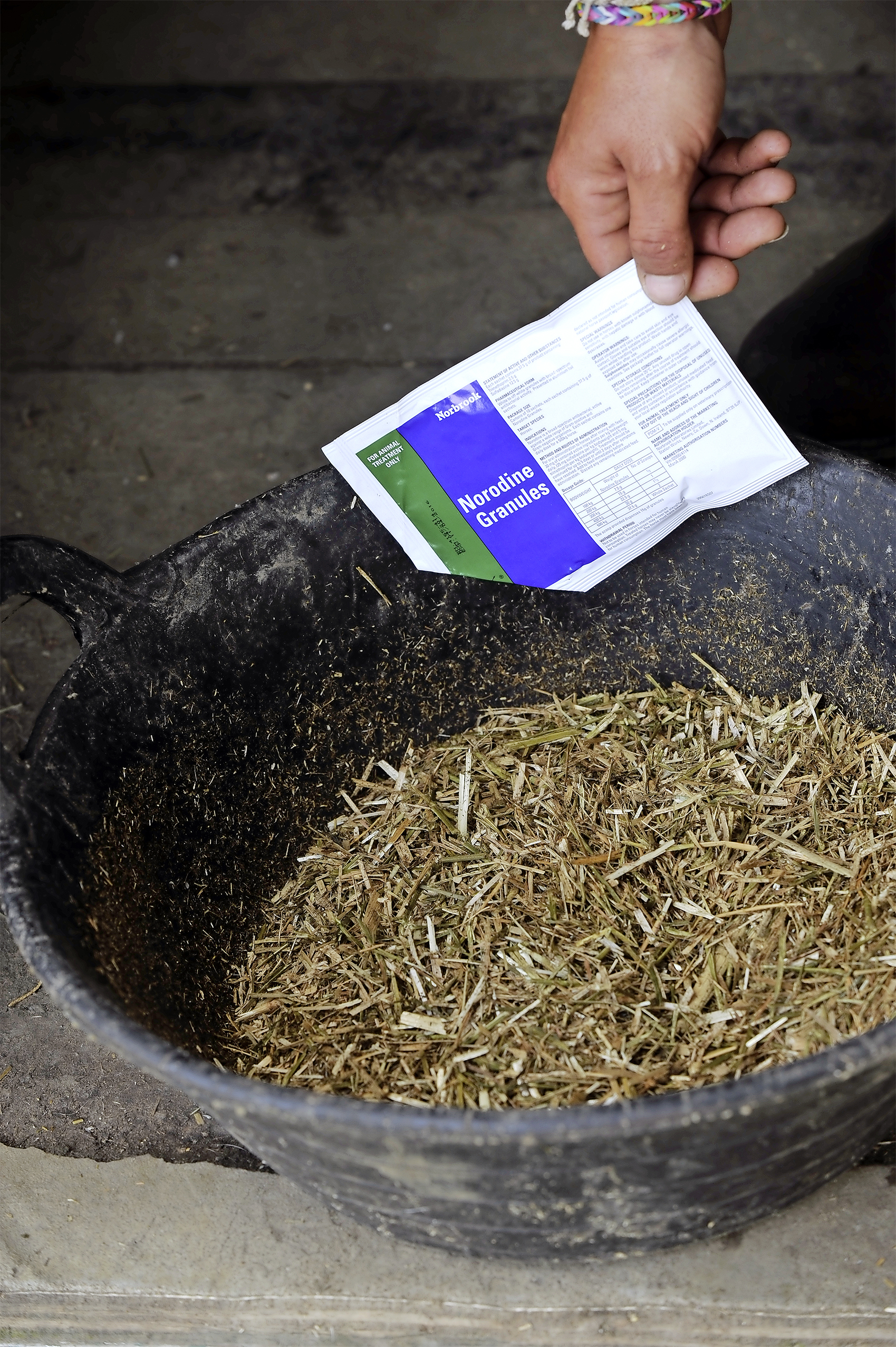 Norodine Granules can be effective in treating general infections in horses