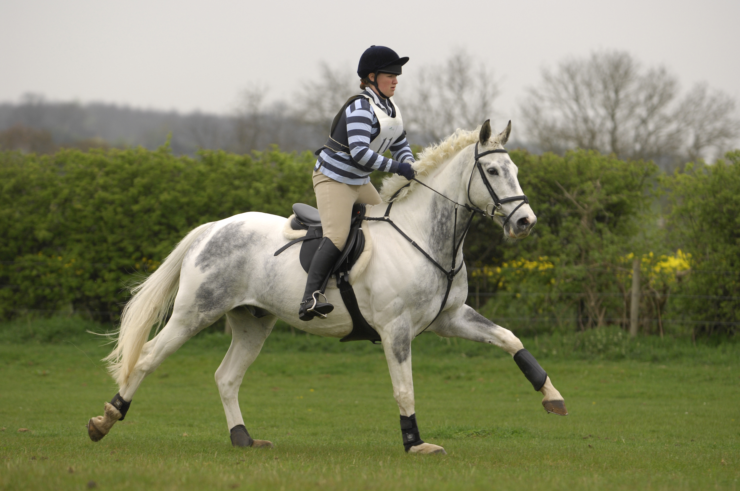 Competing your horse for the first time doesn't have to be terrifying