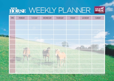 Plan out your riding activities and more using one of our handy weekly planners