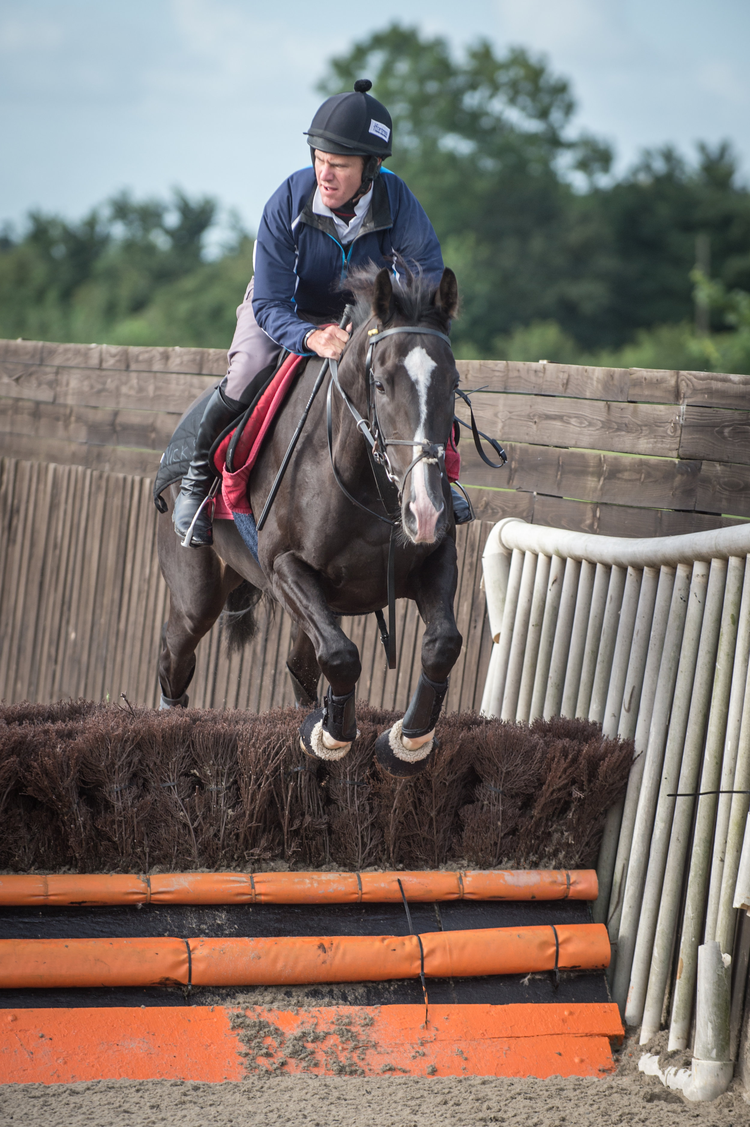 Another fo the eight, Coastal Tiep, boasts smart form in Point-to-Points
