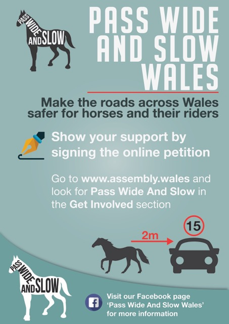 The campaign wants to educate drivers the importance of driving wide and slow past horses