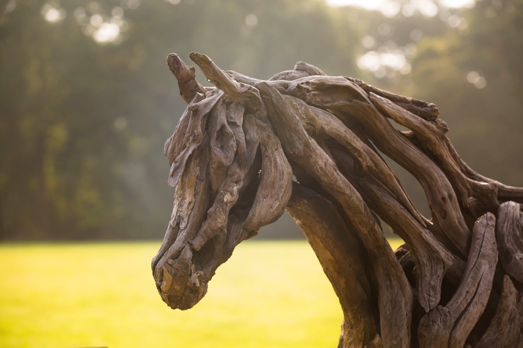 Young Arabian Sculpture made from oak by Heather Jansch on display at Sculpture by the Lakes