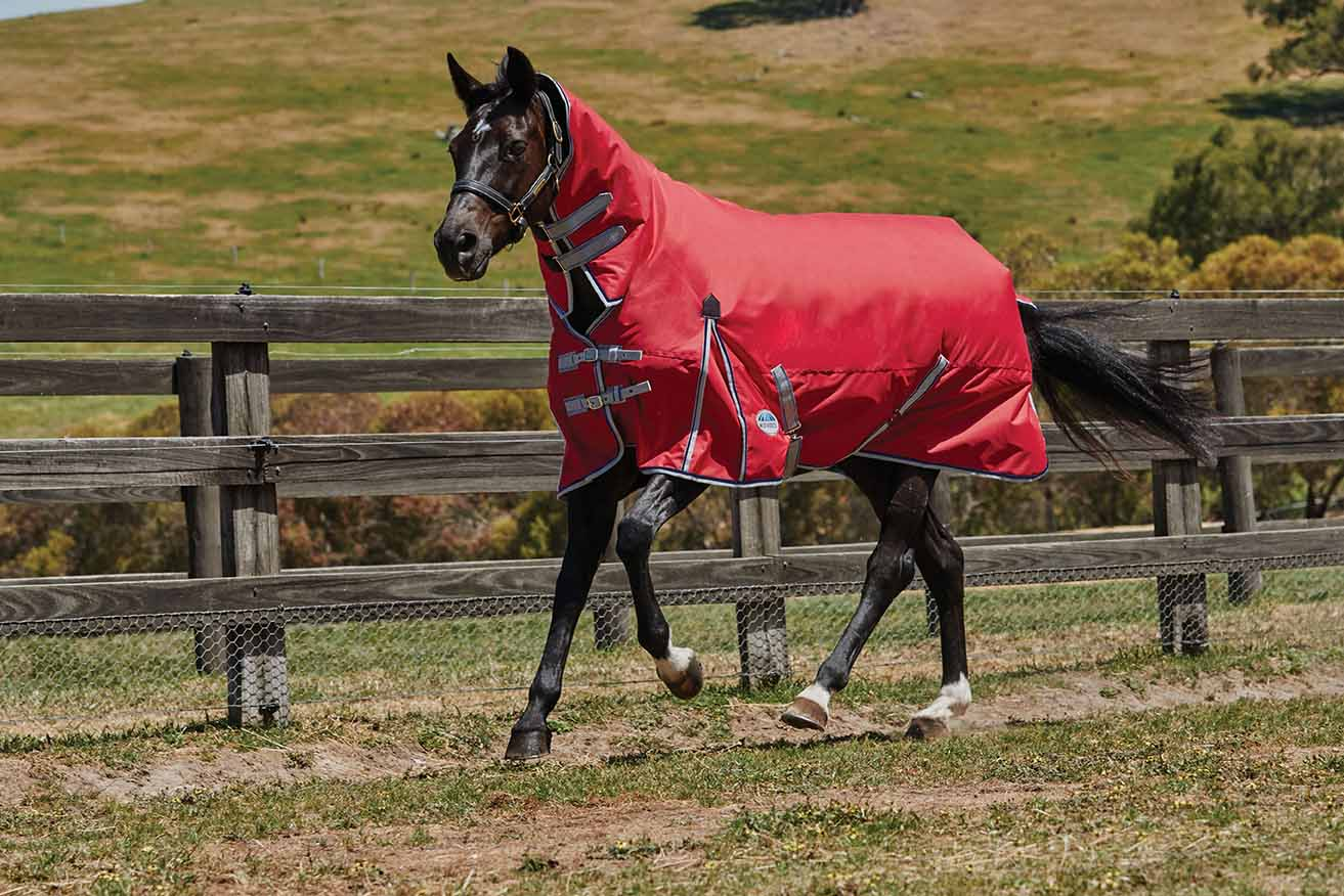 Five Of The Best Medium Weight Turnout Rugs Your Horse Magazine